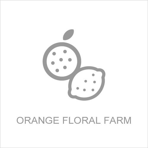 果樹園運営事業